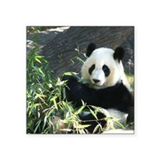 "panda2 Square Sticker 3"" x 3"""