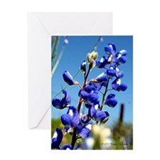 24x24 bluebonnet Greeting Card