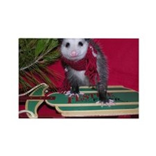 Possum on Christmas sled Rectangle Magnet