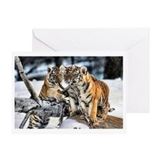 Tiger Cubs Three Greeting Card