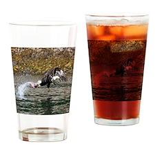 IMG_5899 - Copy Drinking Glass