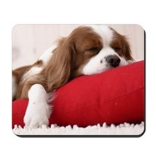 Spaniel pillow Mousepad