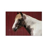 Paint Pony Rectangle Magnet (100 pack)