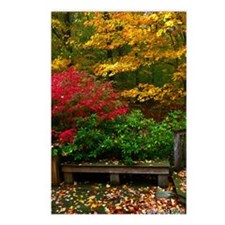 backyard color Postcards (Package of 8)