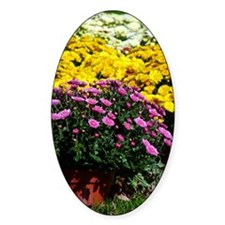 COLORFUL MUMS Decal