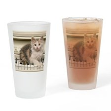 piano kitten panel print Drinking Glass