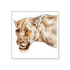 "lioness1 Square Sticker 3"" x 3"""