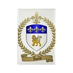 AMIOT Family Crest Rectangle Magnet