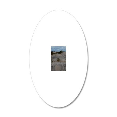DSC_0182 20x12 Oval Wall Decal