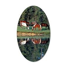 reflection_ipad 35x21 Oval Wall Decal