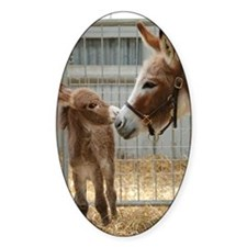 Newborn Donkey Foal Decal