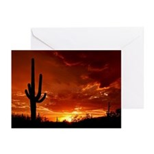 Saguaro Sunset-2 Greeting Cards (Pk of 20)