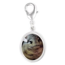 CJ on wheel - 3-5x3-5 - 200 Silver Oval Charm