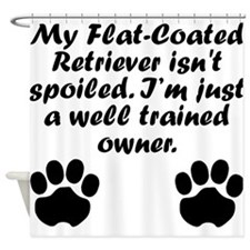 Well Trained Flat-Coated Retriever Owner Shower Cu