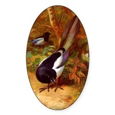 Magpies, Magpie Birds naturalism ar Decal