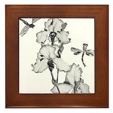 iris_dragonfly_bw_bl Framed Tile