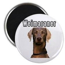 THE Weimaraner Magnet