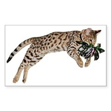 Cat Leap - Decal