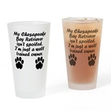 Well Trained Chesapeake Bay Retriever Owner Drinki