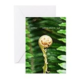 """Koru"" Greeting Cards (Pk of 10)"
