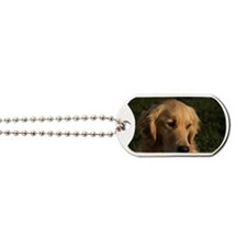 (10) golden retriever head shot Dog Tags