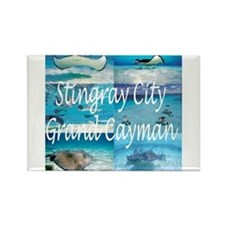 Stingray City Grand Cayman Rectangle Magnet