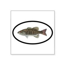 Smallmouth Bass Fishing Oval Sticker