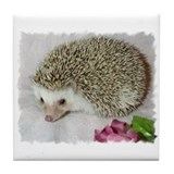 Cute Hedgehog Tile Coaster