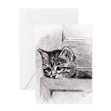 KittenInDrawer_8x10 Greeting Card