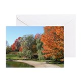 Fall Foliage -  Greeting Cards (Pk of 10)
