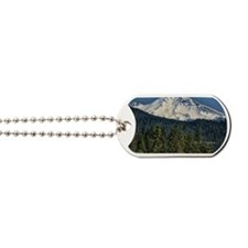 shasta Dog Tags