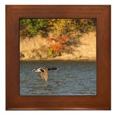 Odd Duck Framed Tile