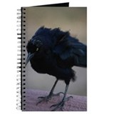 Crow Journal