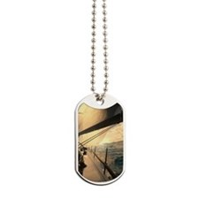 st_thomas_3_25_10_img_5411_23X35_Poster_v Dog Tags