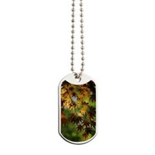 Japanese Garden Dog Tags