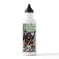 IMG_3591 Water Bottle