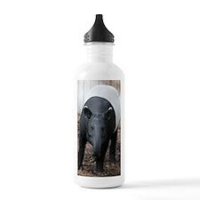 IMG_6275 Water Bottle