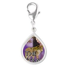 The Stray Rect Mag Silver Teardrop Charm