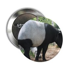 "Tapir-MP 2.25"" Button"
