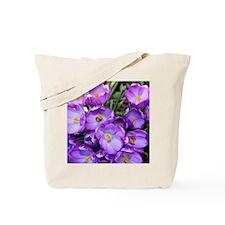 crocus-note_4589 Tote Bag