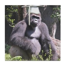 Gorilla Graduation Tile Coaster