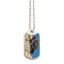 2x3_magnet    5 Dog Tags