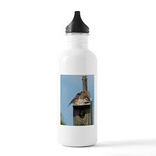 11x11_pillow 4 Water Bottle