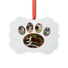 Tali Paw F2bgr Ornament