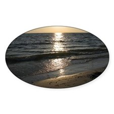 Bonita Springs FL Sunset Decal