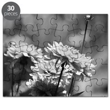 2-Reaching Up Puzzle