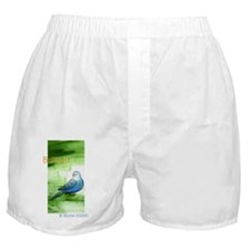 ben bottle Boxer Shorts