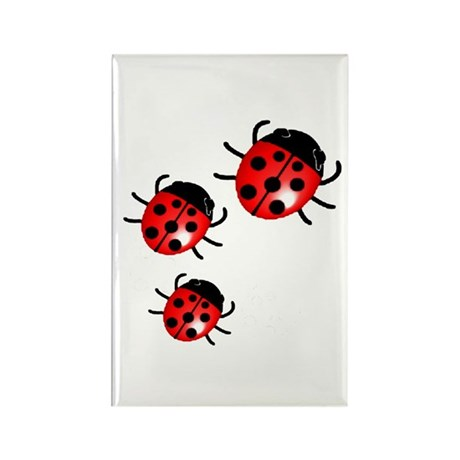 Lady Bugs Rectangle Magnet (10 pack)