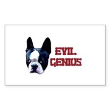 Boston Terrier or Evil Genius? Sticker (Rectangula