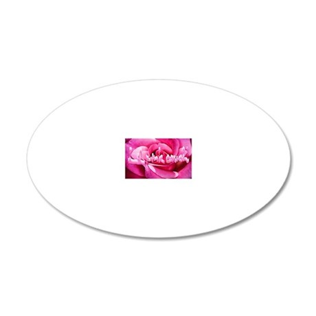 Lil Pink Crush Pink Rose2 20x12 Oval Wall Decal